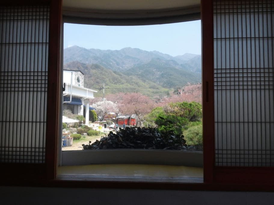 View from the Double room ( I )