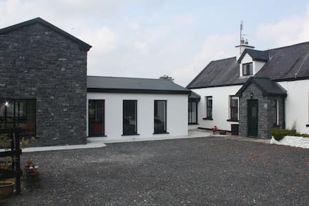 Irish Cottage and 21st Century Apt.