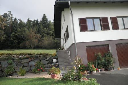 Ruhige, gemütliche Ferienwohnung  - Hartberg Umgebung - Apartamento