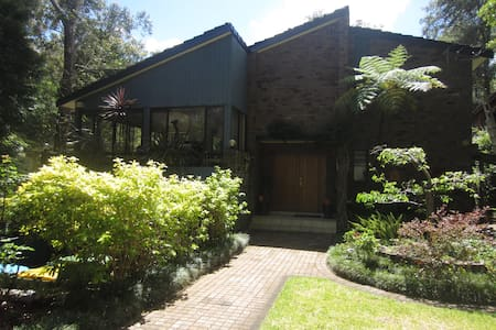 Rainforest outlook in Sydney retreat - Hus