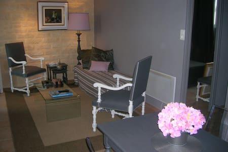 Appartement de charme en Camargue - Aigues-Mortes - Apartment