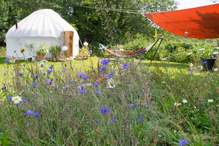Yurt in a secluded flower meadow - Jurta