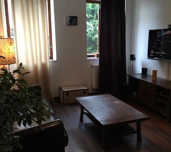 Maison atypique près de CDG - Hus