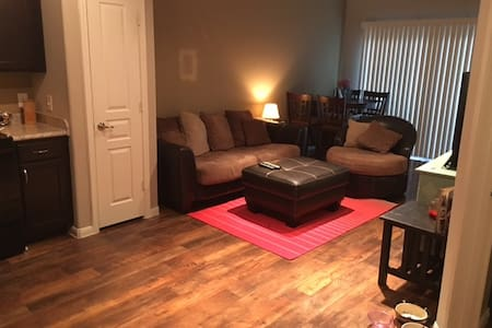Comfortable, clean apartment near Plano - Lewisville