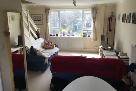 Two Bedroom Modern Flat - Pis