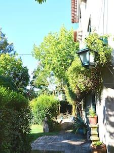 Casa de Tondela - House