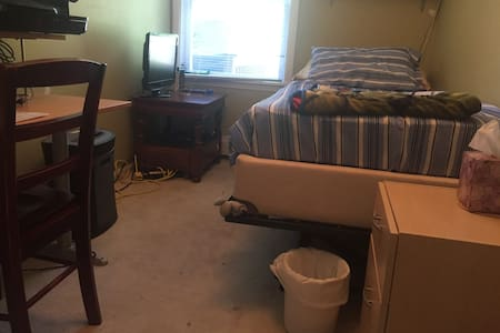 Single bed room in Phoenixville borough - Phoenixville - Townhouse
