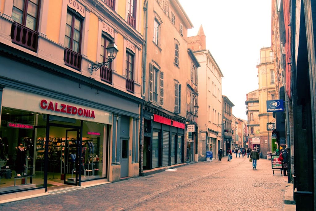 street view - The apartment is located right in the heart of the center of Toulouse