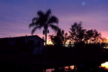 Plenty of Paradise - Palm Harbor - Hus