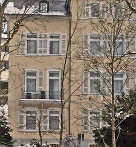 Gemütliche Wohnung mit Parkblick  - Appartement