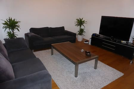 Stay at Airbnb Superhost (wifi+FP) - The Hague - Apartment
