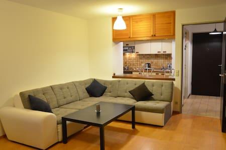 2-room apartment, near center