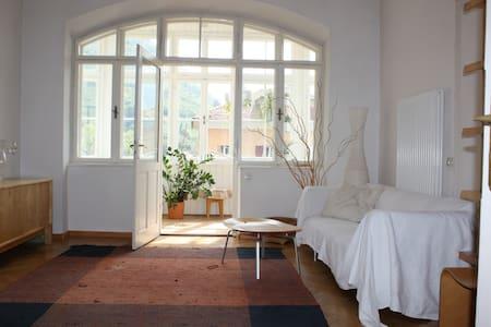 Schönes Zimmer in Zentrumsnähe - Wohnung