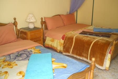 lovely guest house in todra gorge - Ouarzazate Province - Bed & Breakfast