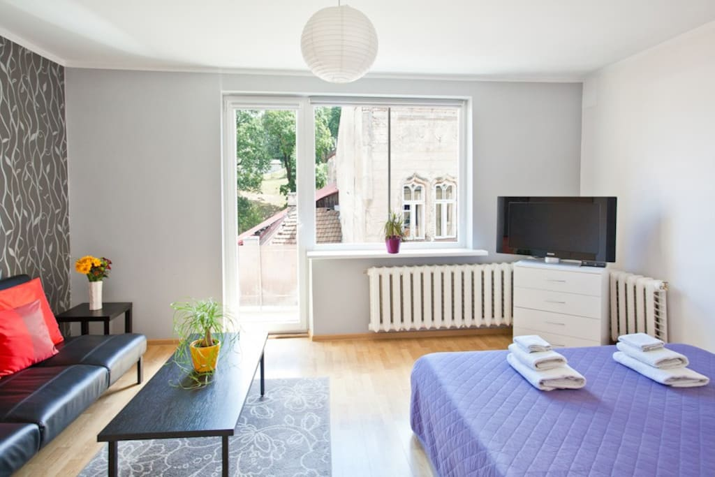 Vilnius Downtown Flat Rental