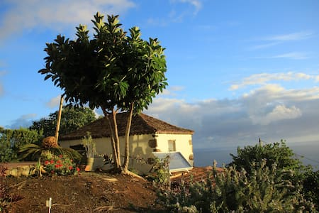 Relaxing, hiking, diving, biking - San Andres y Sauces - House