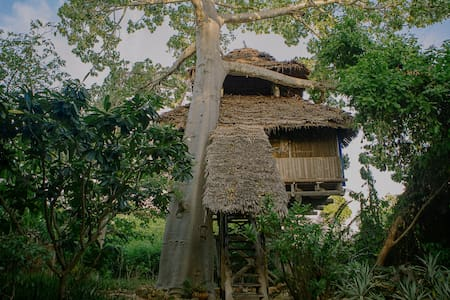 Chole Mjini Lodge - Puumaja