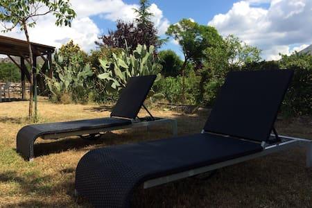 charmante petite villa avec jardin - Corte