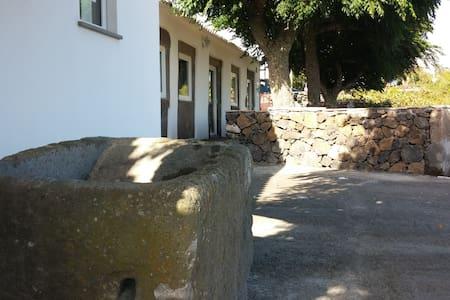 Casa do Figo Doce - S Mateus Da Calheta