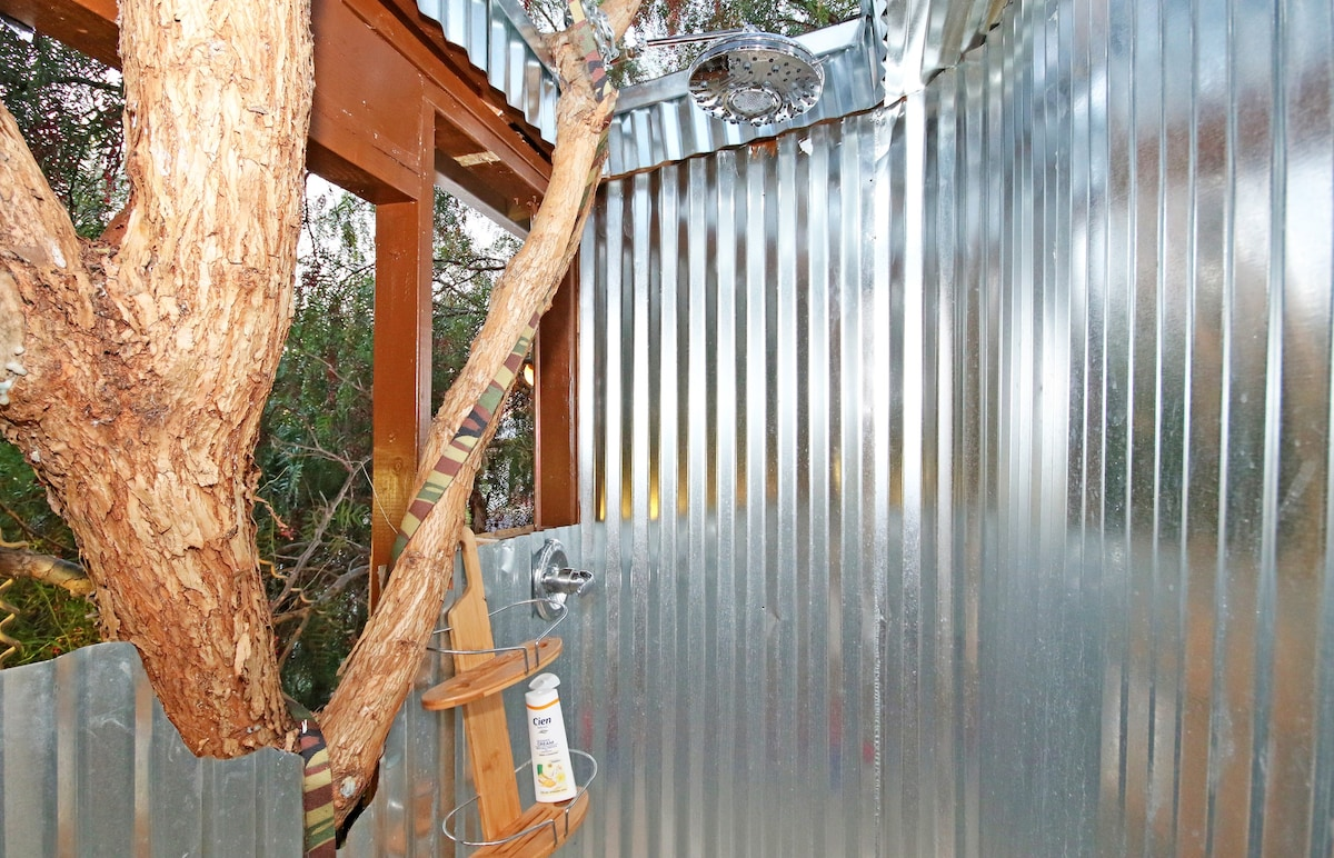 Magical Tree House, Airbnb Rent a Tree Hut for a Night Located in San Diego, California