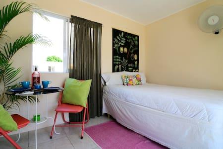 Studio in the city- Air Conditioner - Santo Domingo - Lägenhet