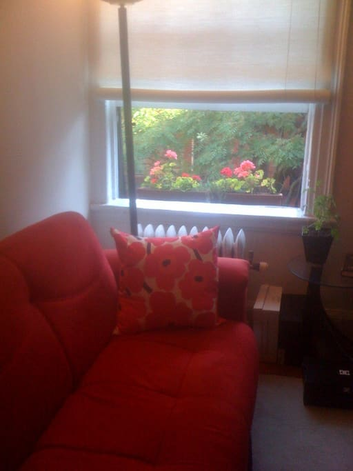 Here's the Living Room sofa and window box Summer 2014