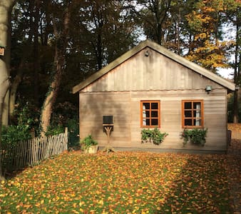 Driener-Bos - Zomerhuis/Cottage