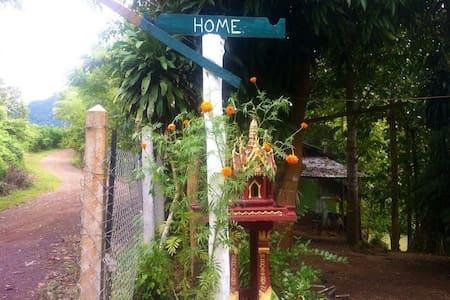 Jungle Eco Bungalow Experience - Luang Prabang - Bungalow