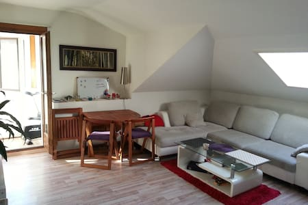 Nice room in beautiful apartment - Huoneisto