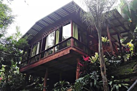 Arenal Tree Cabin-La Fortuna - Blockhütte