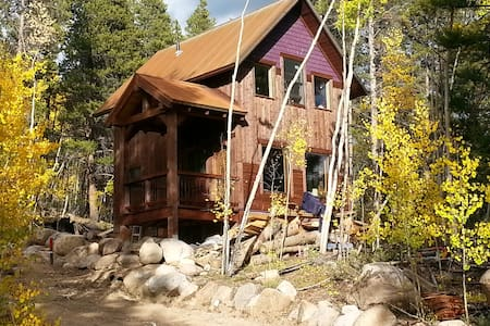 Aspen Forest Retreat - Leadville - 獨棟