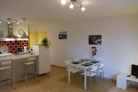 Appartement meublé proche Toulouse - Flat