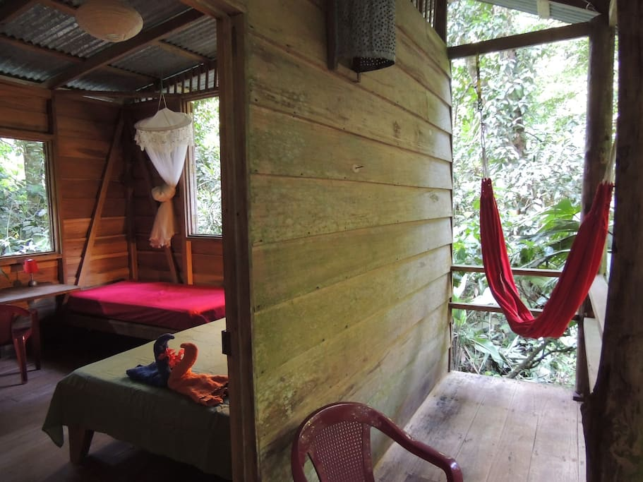 Your cabin and hammock balcony downstairs