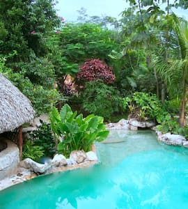 Room type: Private room Property type: Treehouse Accommodates: 3 Bedrooms: 1 Bathrooms: 1