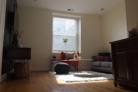 Cozy Eckington Condo - Washington - Pis