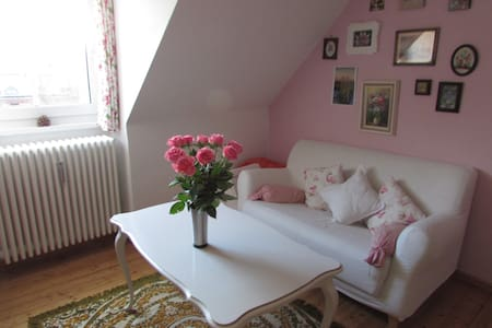 Cozy 45 m² apartment near central station and ZOB - Apartment