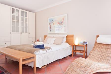 Big room & terrace - Buenos Aires - Huis