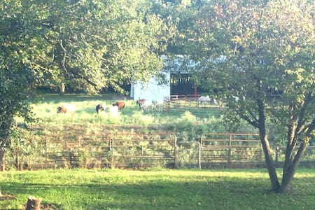 Pasture Space and Empty Horse Barn - Outros