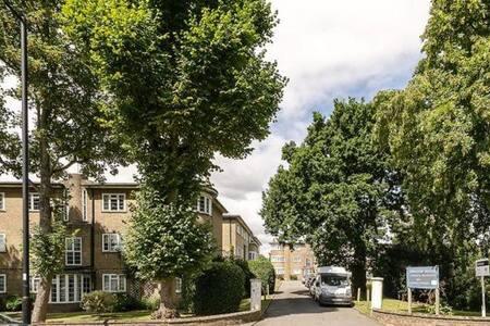 Bright flat in leafy Oakwood - Appartement