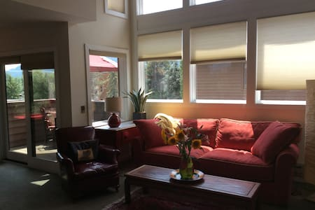 In town condo, sunny, open and spacious - Appartement