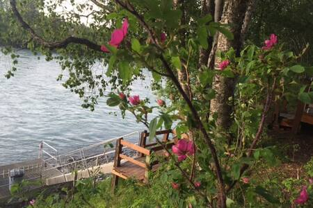 Private 3 BR Cabin on Kenai River - Stuga