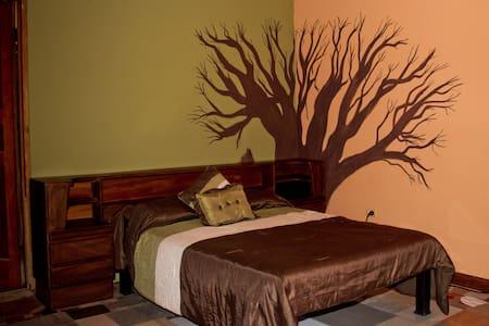 Quinta mi tata double room with kitchenette