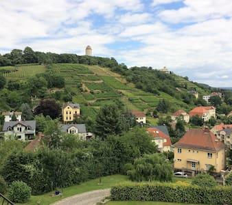 Villa in den Weinbergen mit Panorama von DresdenUG - Radebeul - Apartment