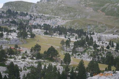 Vacances dans les Pyrénées Bearnaises - Apartment