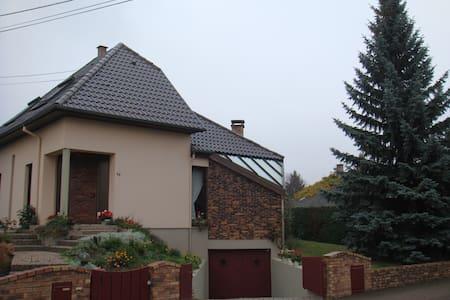 A 10 mn du centre de Strasbourg jolie maison - Talo