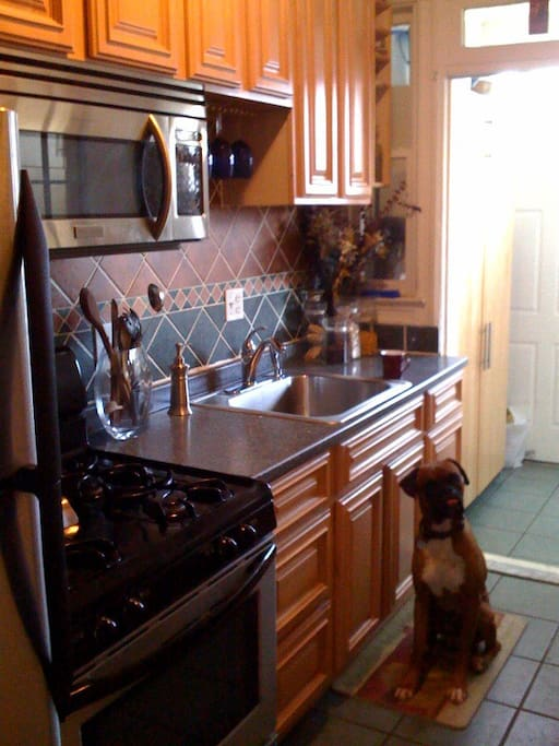 The kitchen and Miko