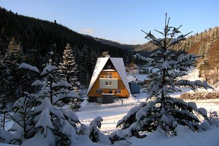 VILA-ANNA /Ap.STANDARD  ,  Valašsko - Villa