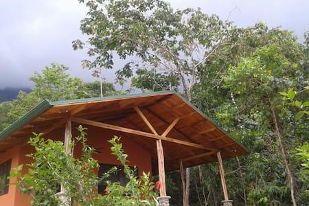 Casa Dulce...sweet tropical days!
