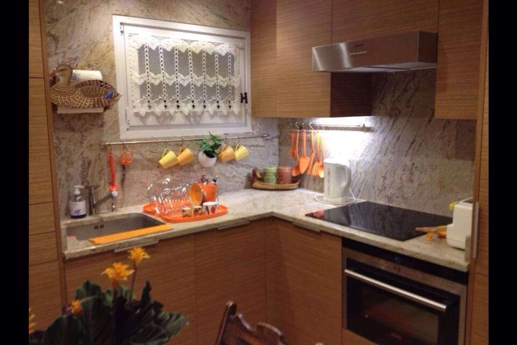 Brand new fully equipped kitchen with induction stove, oven, microwave and full size refrigerator