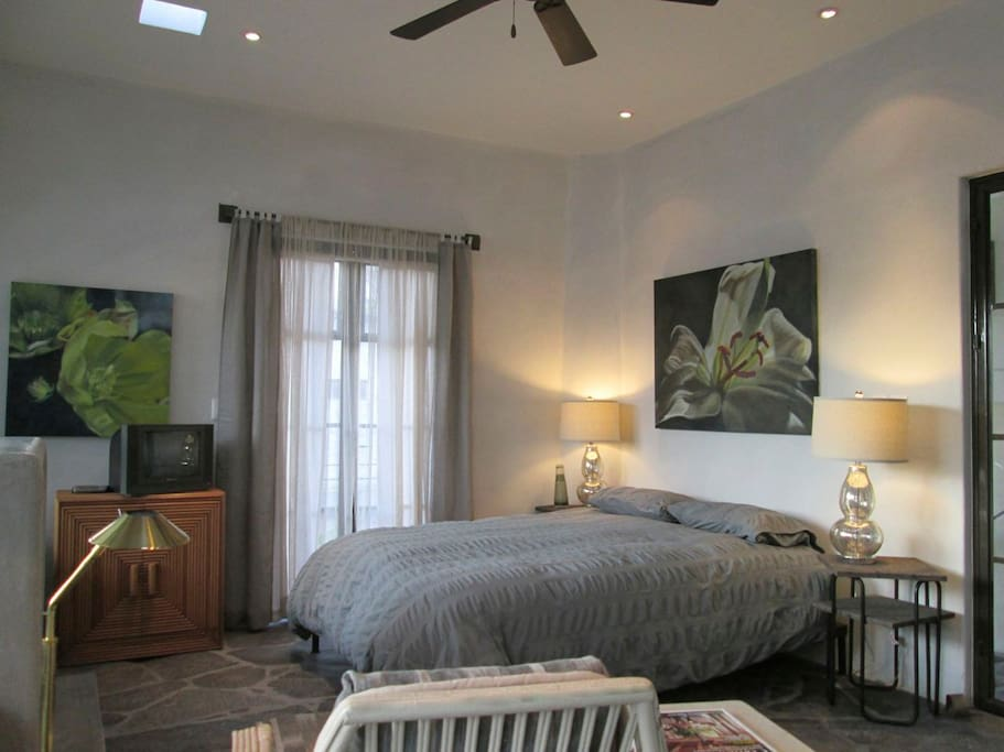 Queen size bed, small balcony, skylights and ceiling fan